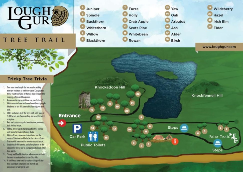 Tree Trail & Fairy Trail Graphic Map